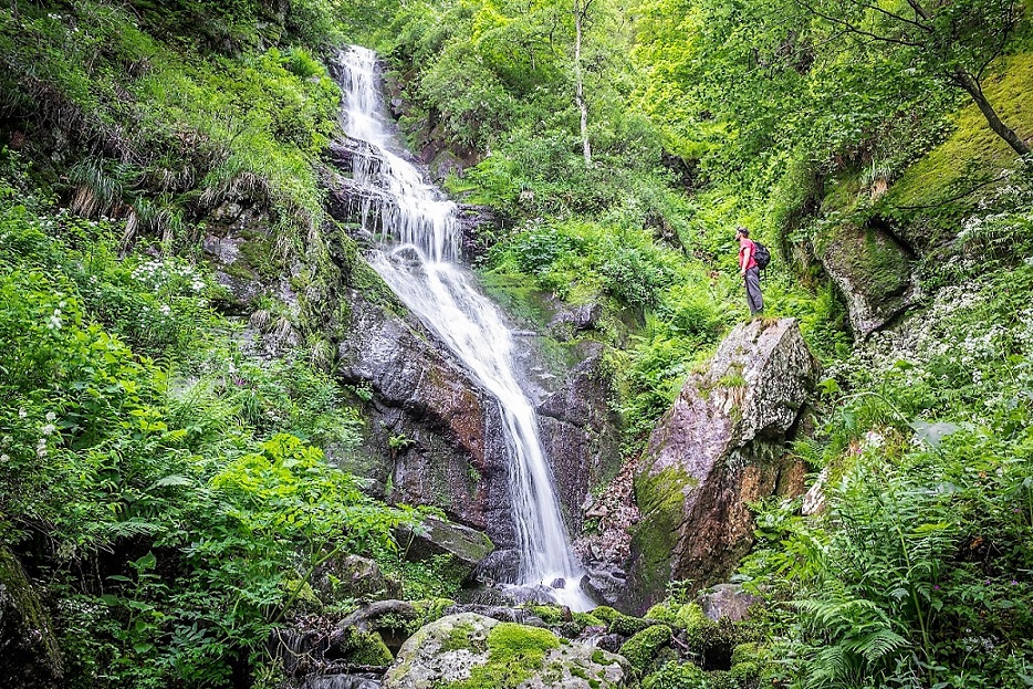 In the Stara Planina Nature Park, 57 hydropower projects have now been stopped. © Milan Simonovic