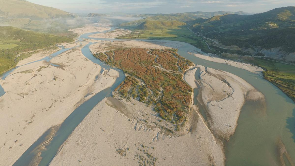The Vjosa is the last large wild river in Europe (outside Russia). The planned hydropower projects would destroy the unique ecosystem. (c) Gregor Subic