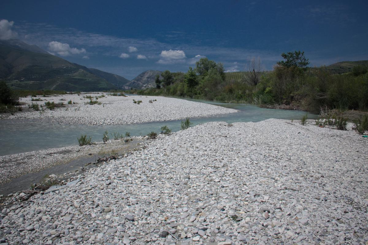 ​Vjosa River close to Tepelene, one of the study areas of the GEO Biodiversity Days. Photo: Romy Durst