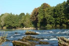 The Sava River (SLO/HR/BIH/RS)