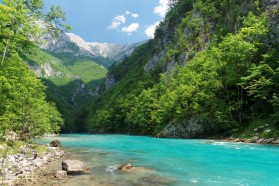 Tara in Montenegro. The river is threatened by 8 projected hydropower plants.