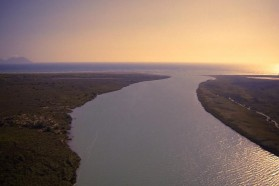 The river's delta at the Adriatic Sea, just north of the Narta Lagoon, near the village of Dëllinja.