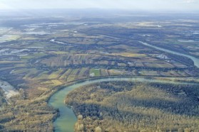 Meander, alluvial forests, and floodplains are typical features of the middle reach of natural rivers. Along the Sava River, the Lonjsko Polje Nature Park exhibits such features.